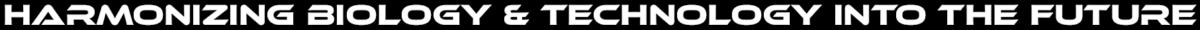 Imbolc 2019 - KyoTech - Website Design, Hosting, & Management